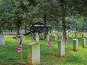 Photo of a cemetery showing white military grave markers with flags and an ancient cannon in the background.