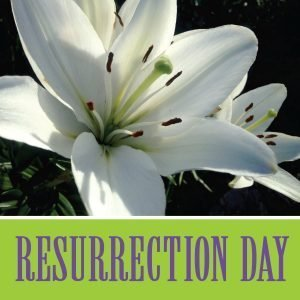 "The words, ""Resurrection Day"" with photo of a lily."