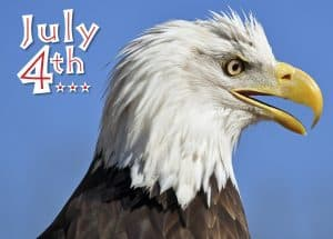 "Photo of the head of a Bald Eagle with the words ""July 4th"""
