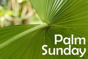 "The words, ""Palm Sunday"" over a close-up photo of a palm branch."