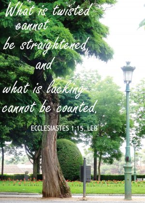 "Photo of a tree in a park with the words ""What is twisted cannot be straightened, and what is lacking cannot be counted. -Ecclesiastes 1:15"""