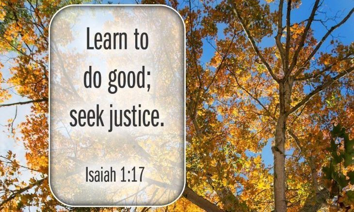 "Photo of a tree looking up through leaves that are yellow toward blue sky with the words, ""Learn to do good. Seek Justice."""