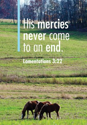 """Photo of three horses in a pasture with trees in the background and the words, """"His mercies never come to an end."""""""