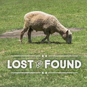 "The words, ""Lost and Found"" below a photo of a sheep grazing."