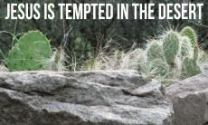 "The words, ""Jesus is tempted in the desert,"" over a photo of prickly pear cactus."