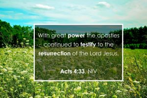 "The words, ""With great power the apostles continued to testify to the resurrection of the Lord Jesus."" over a photo of a meadow."